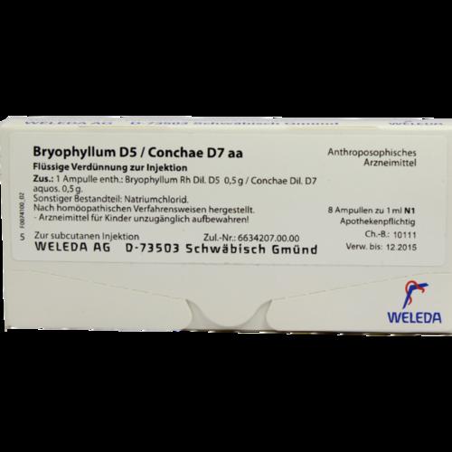 Verpackungsbild(Packshot) von BRYOPHYLLUM D 5/Conchae D 7 Ampullen