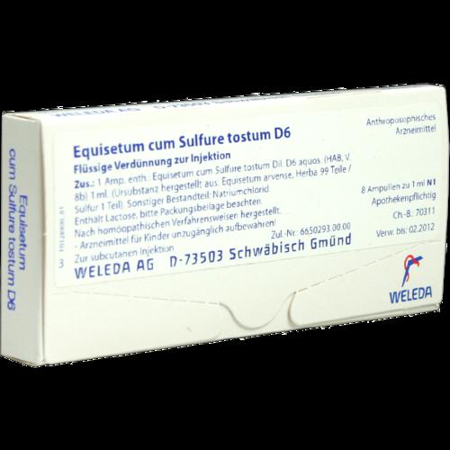 Verpackungsbild(Packshot) von EQUISETUM CUM Sulfure tostum D 6 Ampullen