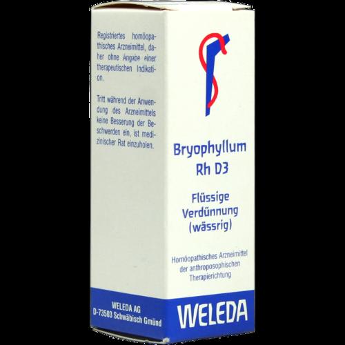 Verpackungsbild(Packshot) von BRYOPHYLLUM RH D 3 Dilution