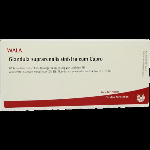 Verpackungsbild(Packshot) von GLANDULA SUPRARENALIS sinistra cum Cupro Ampullen