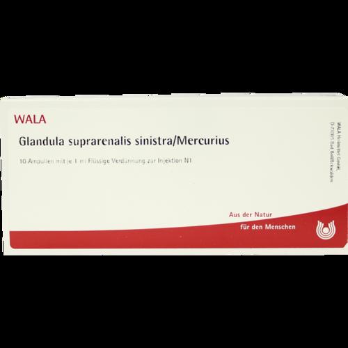 Verpackungsbild(Packshot) von GLANDULA SUPRARENALIS sinistra/Mercurius Ampullen
