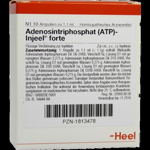 Verpackungsbild(Packshot) von ATP Injeel forte Ampullen