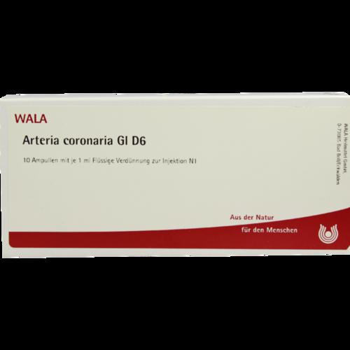 Verpackungsbild(Packshot) von ARTERIA CORONARIA GL D 6 Ampullen
