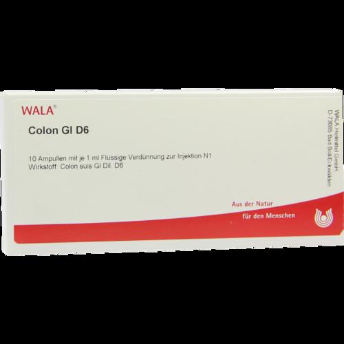 Verpackungsbild(Packshot) von COLON GL D 6 Ampullen