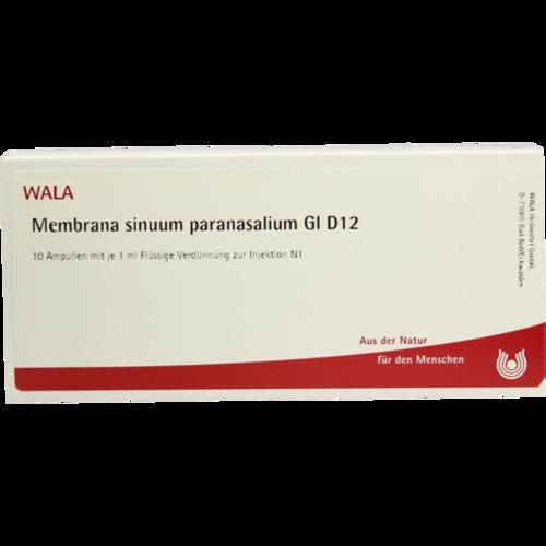 Verpackungsbild(Packshot) von MEMBRANA sinuum paransalium GL D 12 Ampullen