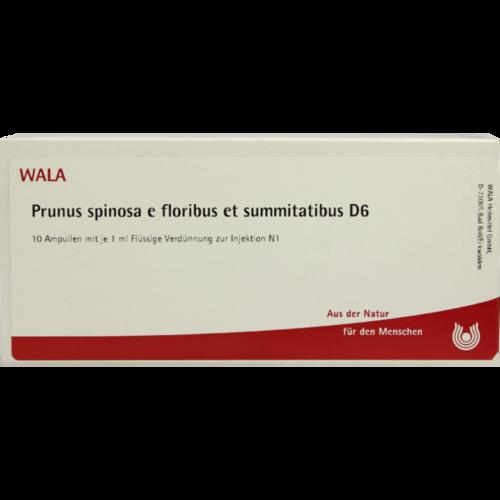 Verpackungsbild(Packshot) von PRUNUS SPINOSA E floribus et summitatibus D 6 Amp.