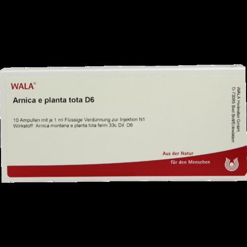 Verpackungsbild(Packshot) von ARNICA E Planta tota D 6 Ampullen