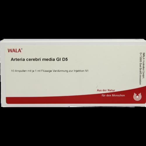Verpackungsbild(Packshot) von ARTERIA CEREBRI media GL D 5 Ampullen