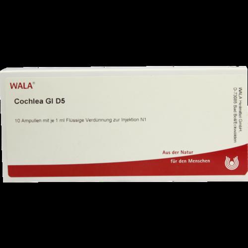 Verpackungsbild(Packshot) von COCHLEA GL D 5 Ampullen