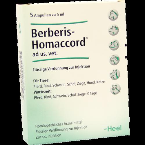 Verpackungsbild(Packshot) von BERBERIS HOMACCORD ad us.vet.Ampullen