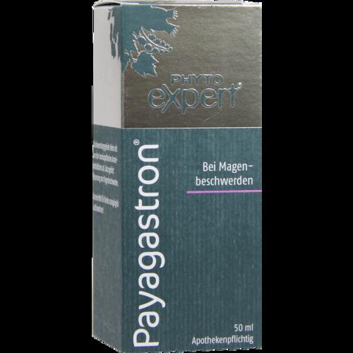 Verpackungsbild(Packshot) von PAYAGASTRON Mischung