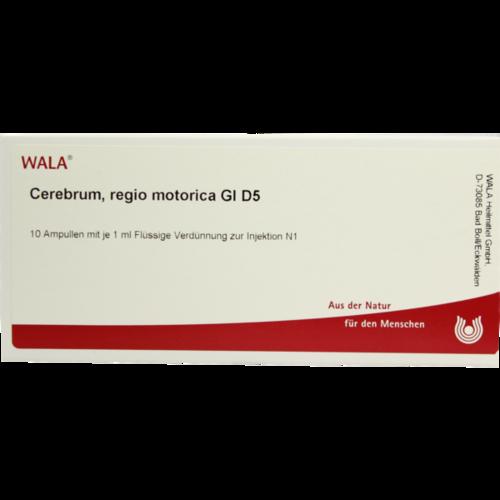 Verpackungsbild(Packshot) von CEREBRUM REGIO motorica GL D 5 Ampullen