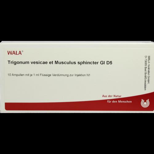 Verpackungsbild(Packshot) von TRIGONUM vesicae et Musculus sphincter GL D 5 Amp.