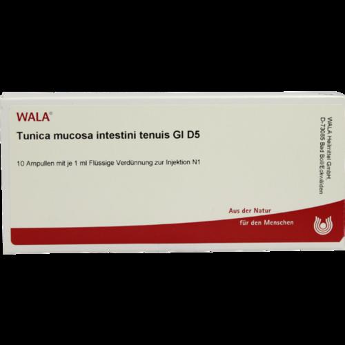 Verpackungsbild(Packshot) von TUNICA mucosa intestini tenuis GL D 5 Ampullen
