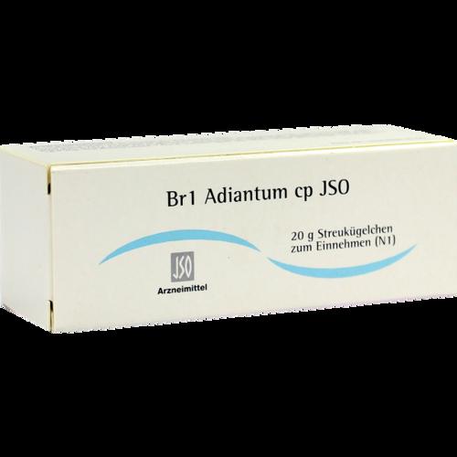 Verpackungsbild(Packshot) von JSO Br 1 Adiantum cp Globuli