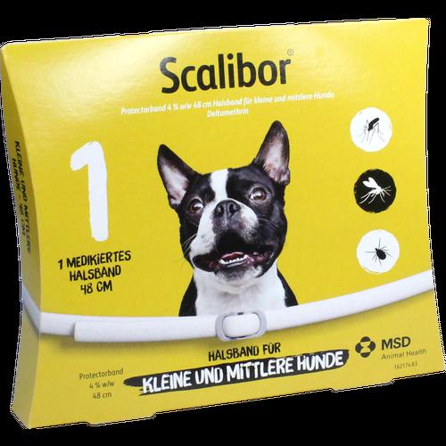 Verpackungsbild(Packshot) von SCALIBOR Protectorband 48 cm f.kleine-mittl.Hunde