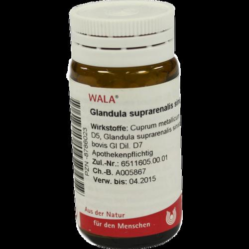 Verpackungsbild(Packshot) von GLANDULA SUPRARENALES sinistra cum Cupro Globuli